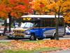 S332: C20 Marine Drive via Totem Park