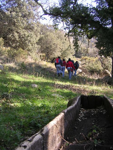 Final de la excursión - robles milenarios - barranc dels horts - ares del maestre - castellón