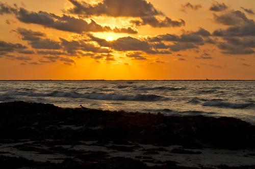 light sky sun beach nature water clouds photoshop nikon lightroom d7000