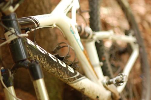 My Bike - Focus Thunder D