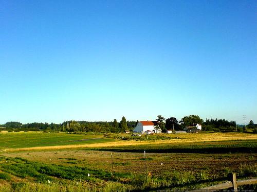 luscher farm on an evening run   DSC01555