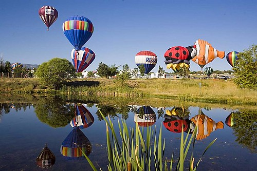 Hot Air Balloons 5590.5