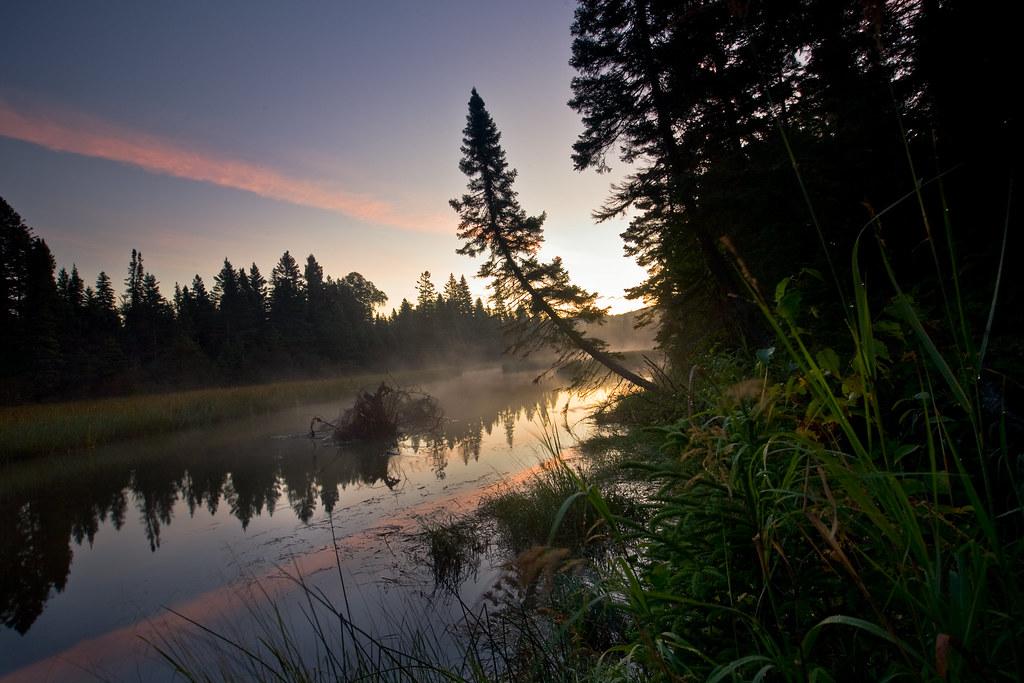 Washington Creek