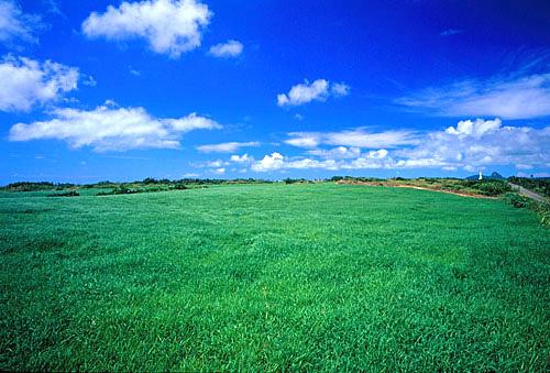 T535屏東滿州大草原