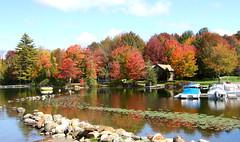 Maine Autumn Colors Lakeside