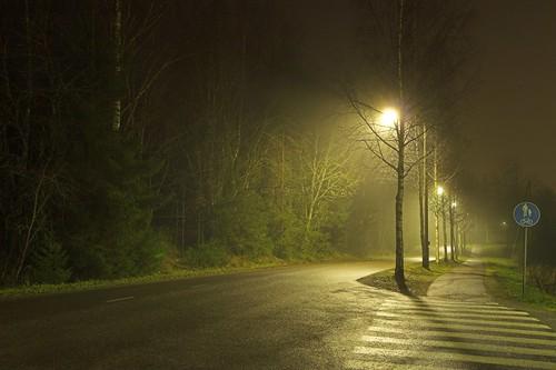 road street longexposure november trees light mist tree lamp misty fog night finland dark landscape geotagged streetlight foggy lamplight 2008 mäntsälä