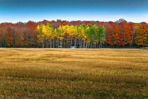 paisagem wisconsin USA