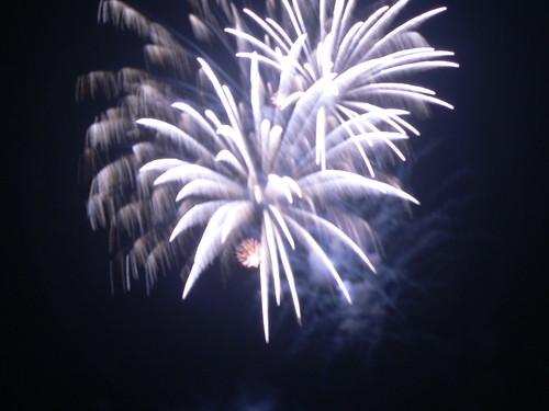 Epic Fireworks - huge palm breaks