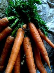 local organicness