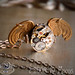ARCANE ANGEL  Vintage Watch Collage Necklace by 19 Moons OOAK Steampunk Beauty MOVING Pieces
