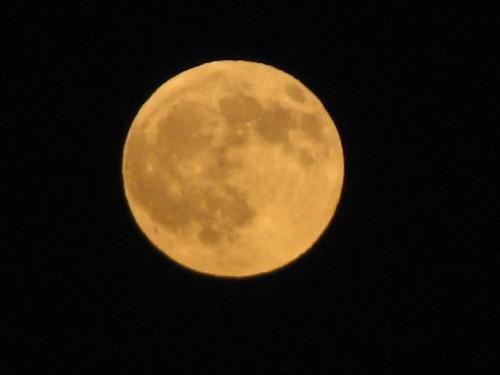 Spiritually Speaking - August Moon