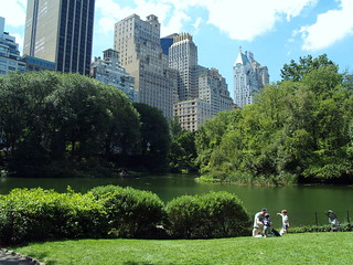 Lower Central Park Shot 5