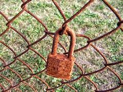 [2005] Rusty Padlock & Fence
