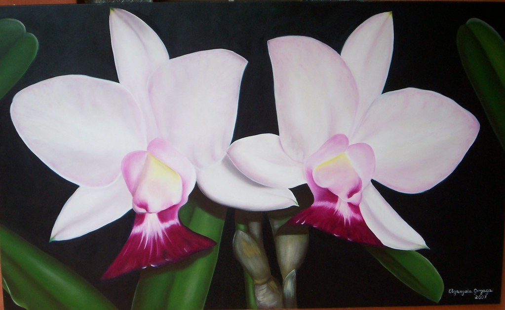 Orquideas   Pintura Em Tela   Painting On Canvas