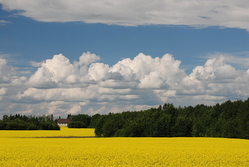 vacation canada landscape day cloudy saskatchewan agriculture pebblebay nikond80 nikon1685vr