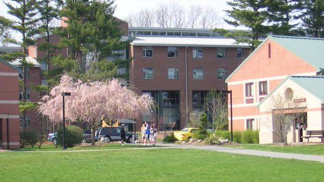 Penn State Dorm Room Tour