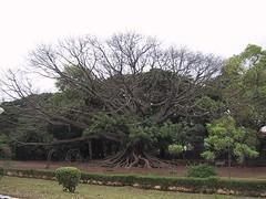 Bangalore 03