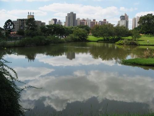 brazil curitiba peggyhr