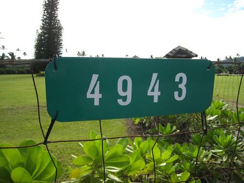 kauai IMG_5552