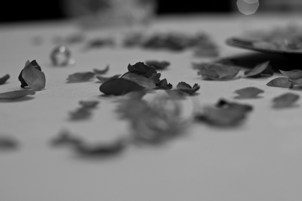 calgary wedding flowers