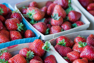 Maine Strawberries