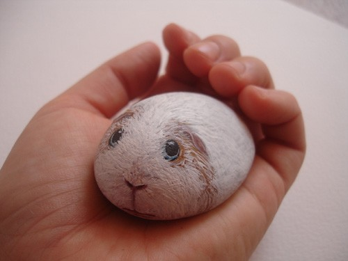 Hand painted sea stone. Guinea pig