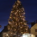 Christmas Tree in Graz