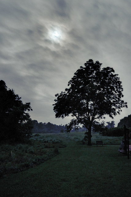 Young Conservation Area, in Jefferson County, Missouri, USA - landscape with moon