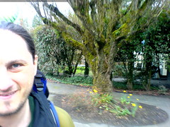 this is supposed to be a photo of me, sequoia on my …