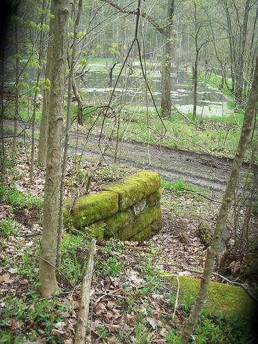 set of steps facing huge pond or swamp...at side of house..