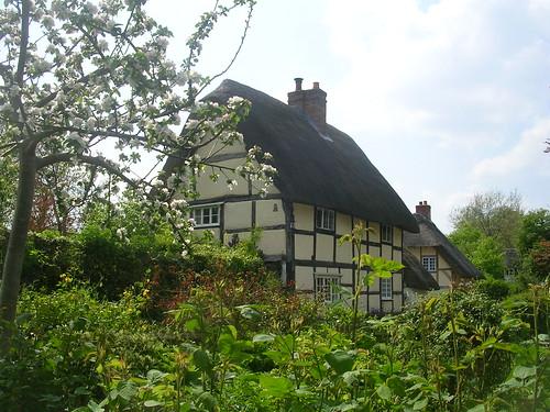 Old houses, Blewbury