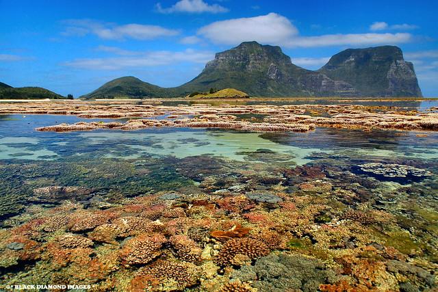 Coral Lagoon - Lord Howe Island,Australia