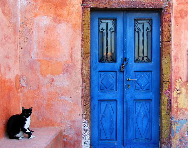 cat on pink wall with blue door & Azul - a gallery on Flickr