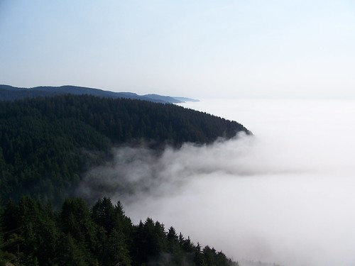 fog coast view or foggy scenic pacificocean oregoncoast pacificcoast capeperpetua lighthouseoregoncoast