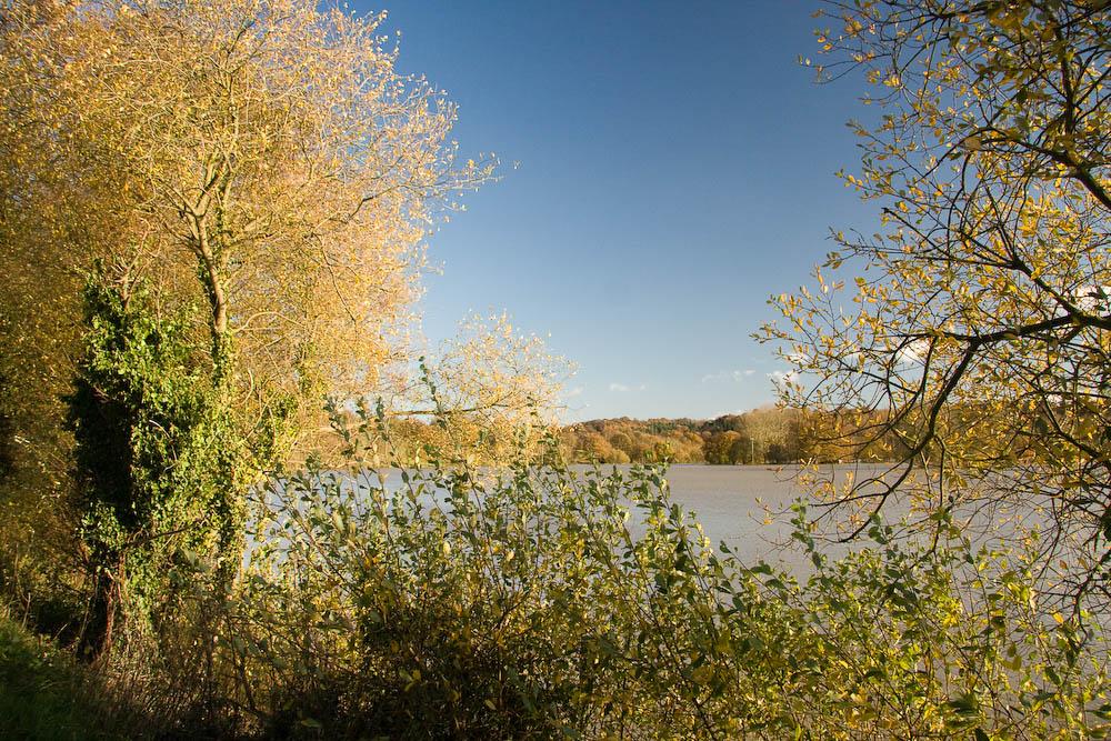 Flooded banks of the River Medway near Penshurst