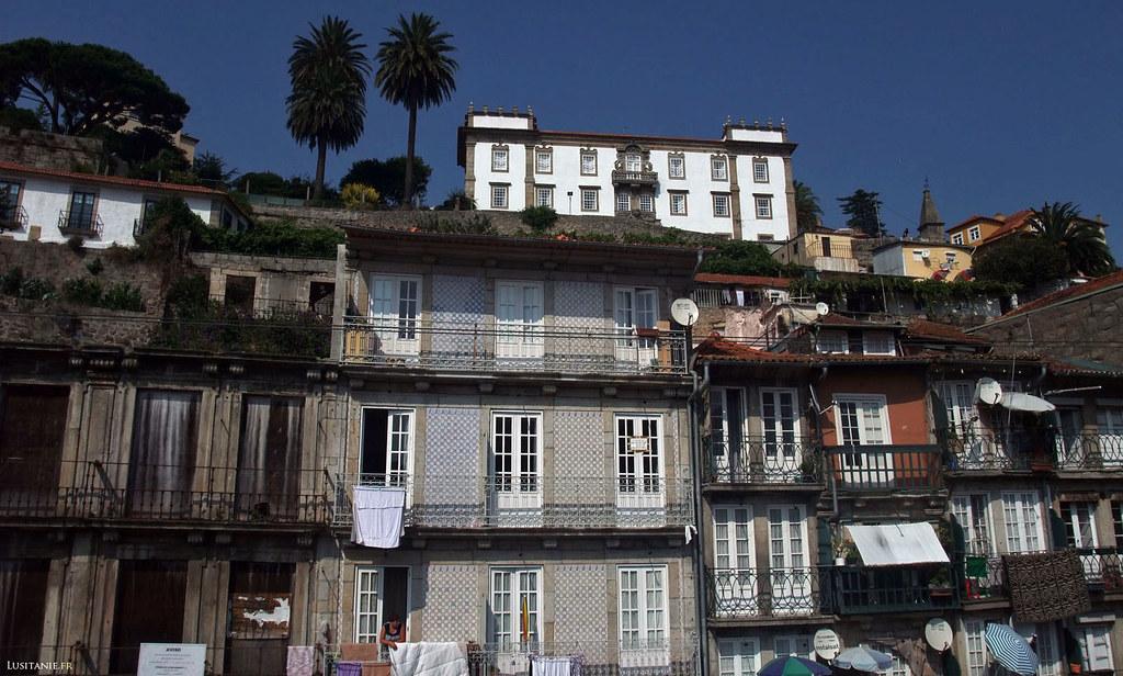 A Porto, les anciens palais se mêlent aux palmiers et aux immeubles populaires, toujours avec un ciel bleu magnifique.