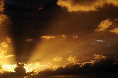 nature sunrise bonaire