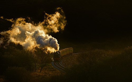 Golden steam