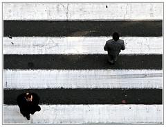 Paso de Cebra / Zebra crossing