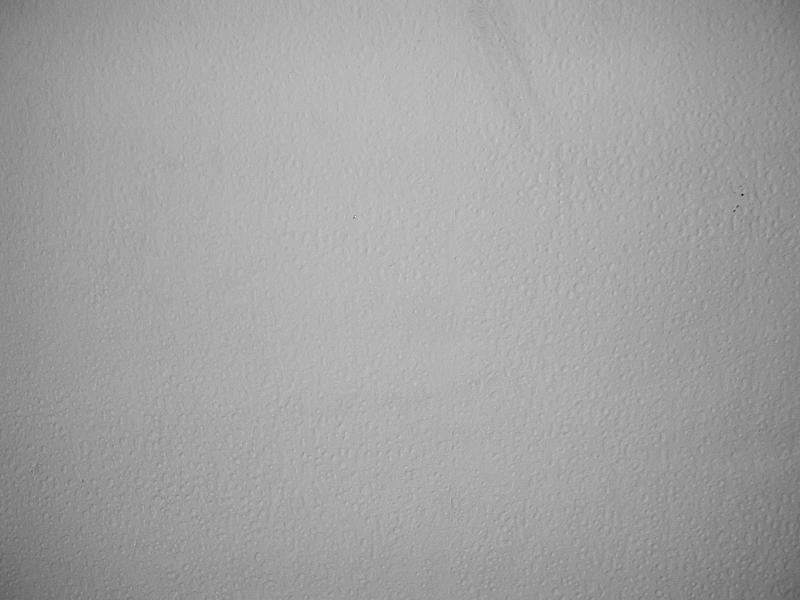 Mur avec papier peint cr pi blanc yseult dyseult un d t flickr photo - Toile intisse a peindre ...