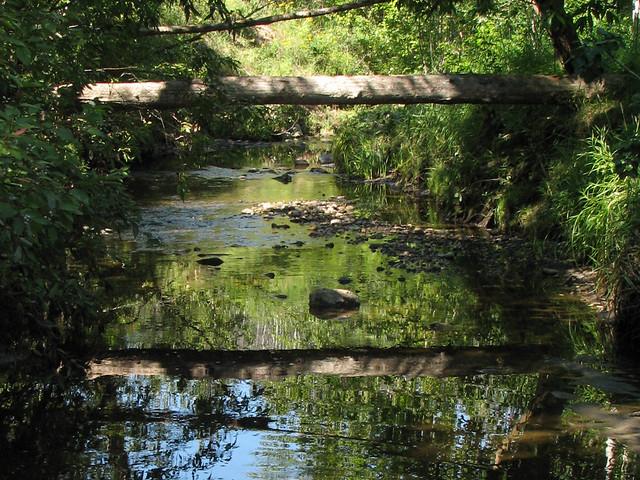Log over creek