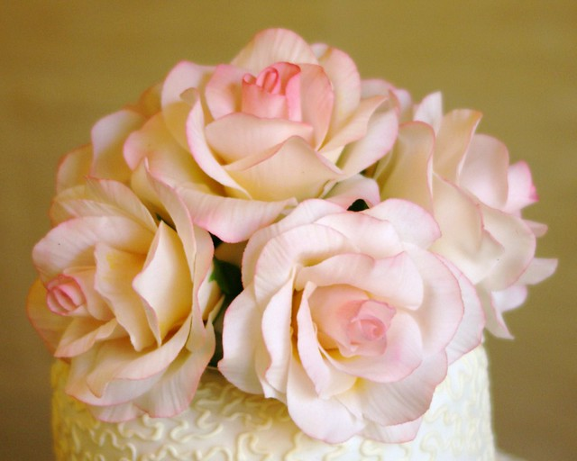 Pink sugar roses on top of cornelli lace wedding cake
