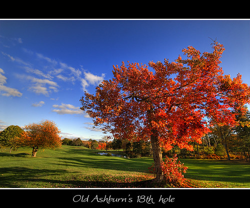 blue autumn red sky orange tree fall leaves club clouds golf leaf maple pond oak course rake chip links hdr putt hdri toomany supershot oldashburn anawesomeshot ubej oldashburns18thhole mylostgolfballs phew18thholealmosttimeforabeer