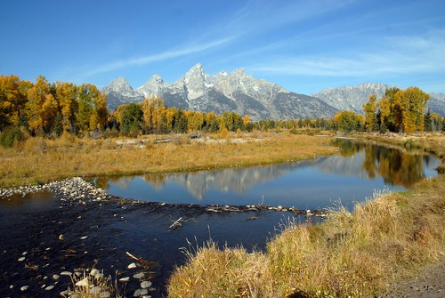 Teton Reflection, Grand Teton National Park DDZ_0181