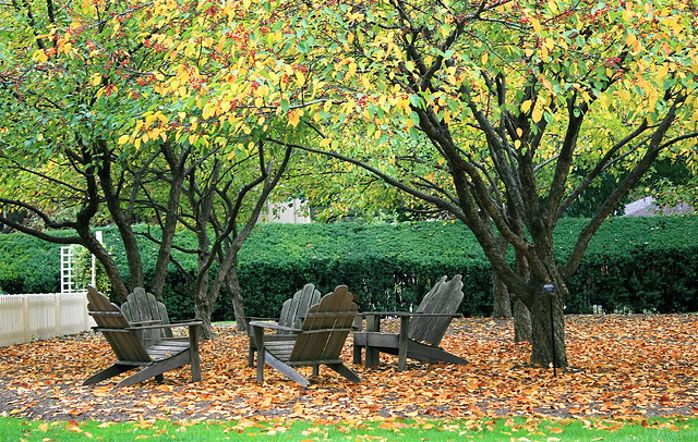Circle of chairs resting atop a carpet of orange leaves beneath the autumn trees at the Frick in Pittsburgh