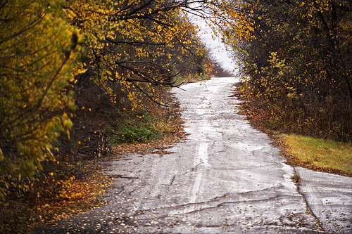 road old autumn fall colors leaves dallas interestingness interesting nikon colorful texas tx falling craig dfw asphalt frisco d700 cmaccubbin maccubbin craigmaccubbin