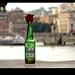 ☆ Heineken's  rose ☆ by Ev@ ;-)