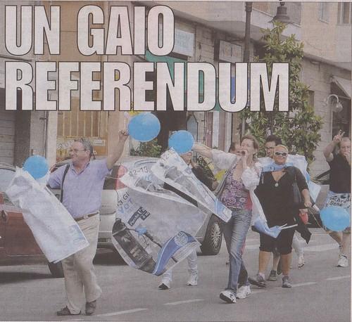 un gaio referendum