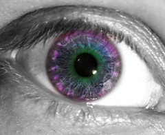iris, purple, violet, macro photography, eyelash, close-up, eye, organ,