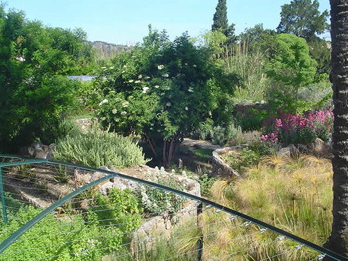 Alta mar for Jardin botanico soller
